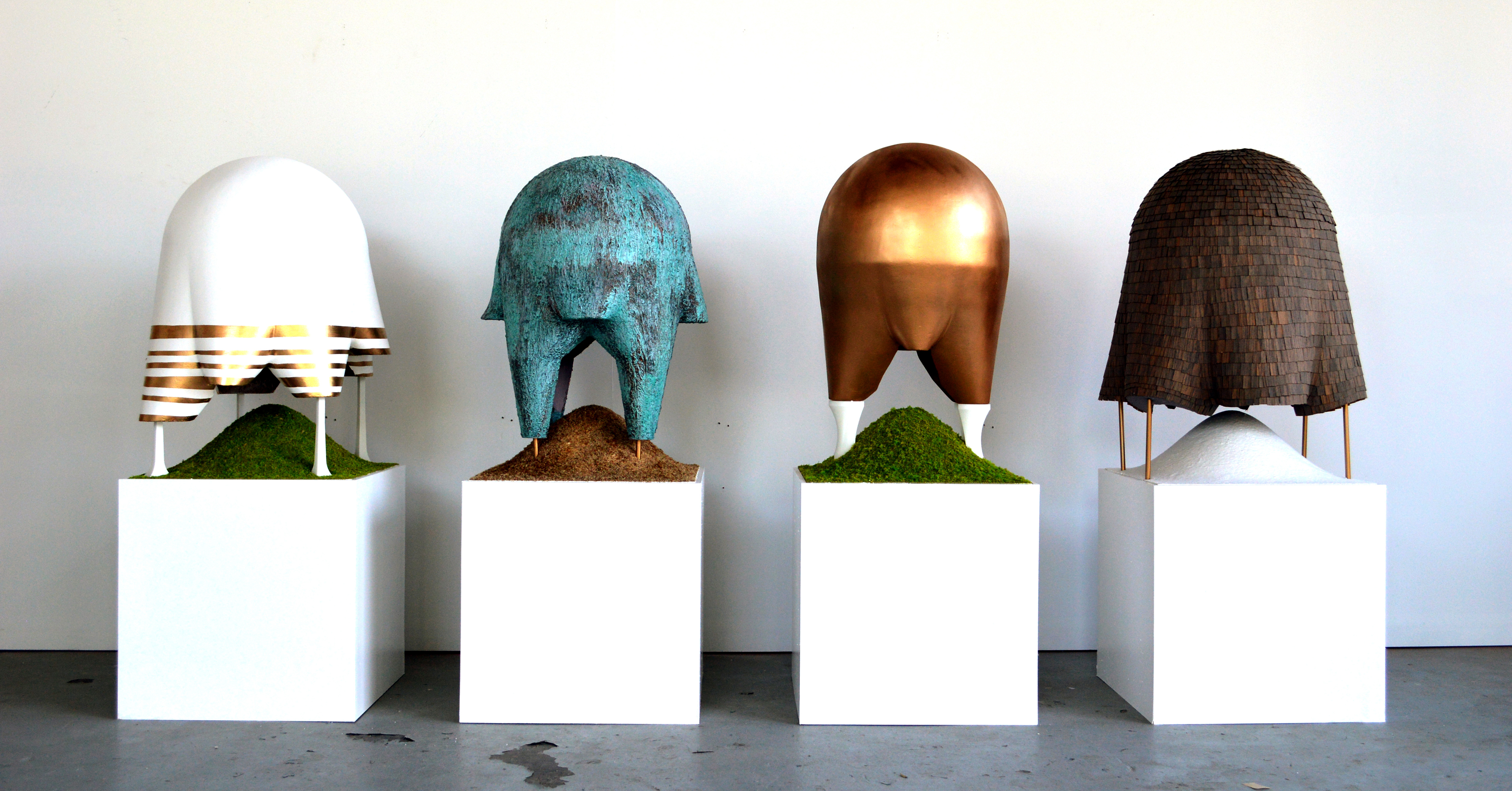 A Project Four Domes At